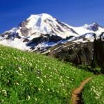 Тест Путешествие в горы.
