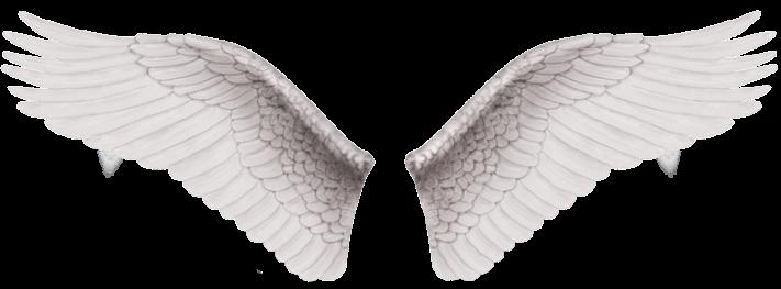 pritcha-dva-angela